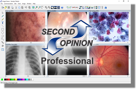 Second Opinion Telemedicine Solutions, Inc
